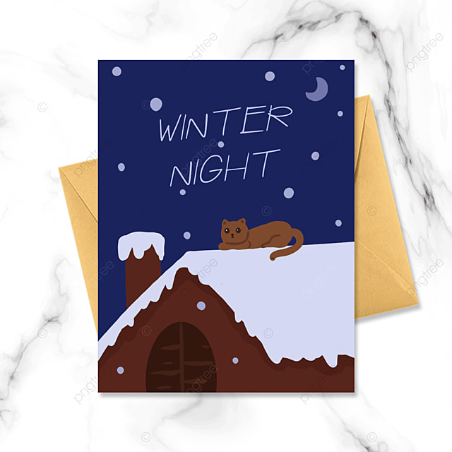 snowy winter night roof kitten