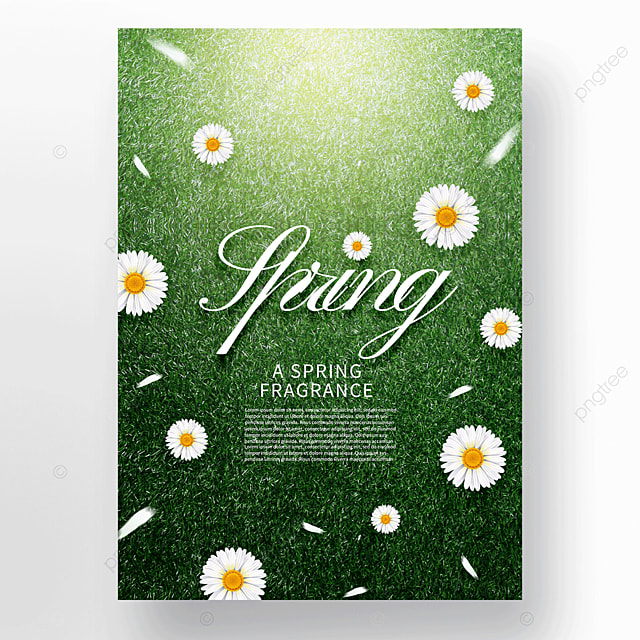 green spring meadow flowers petals
