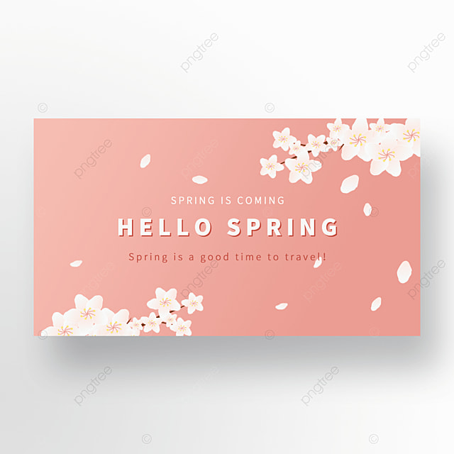 pink background pear blossom spring advertising banner