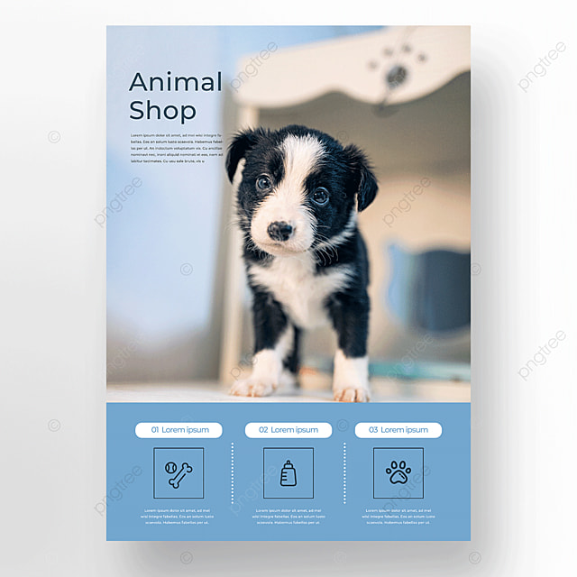 cute icon pet store dog care poster template