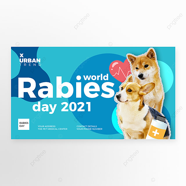 fashion color color block world rabies day web banner