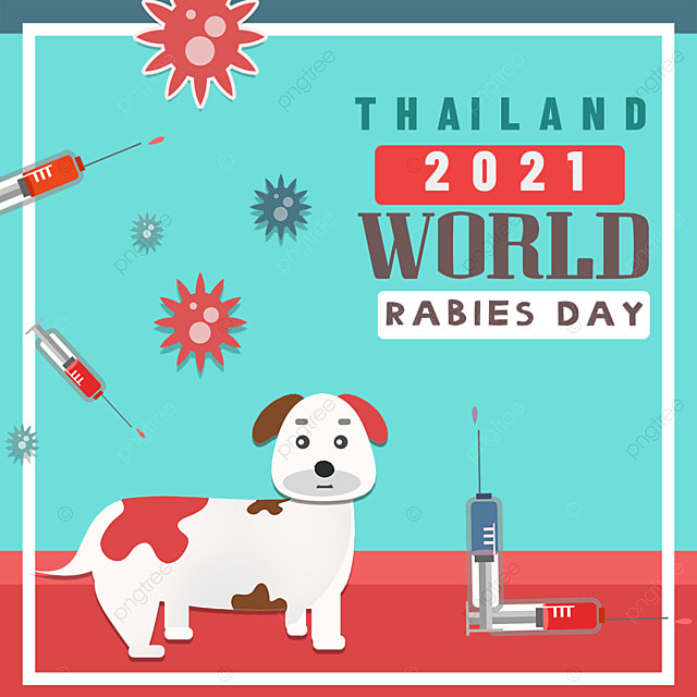 puppies waiting for vaccine on world rabies day