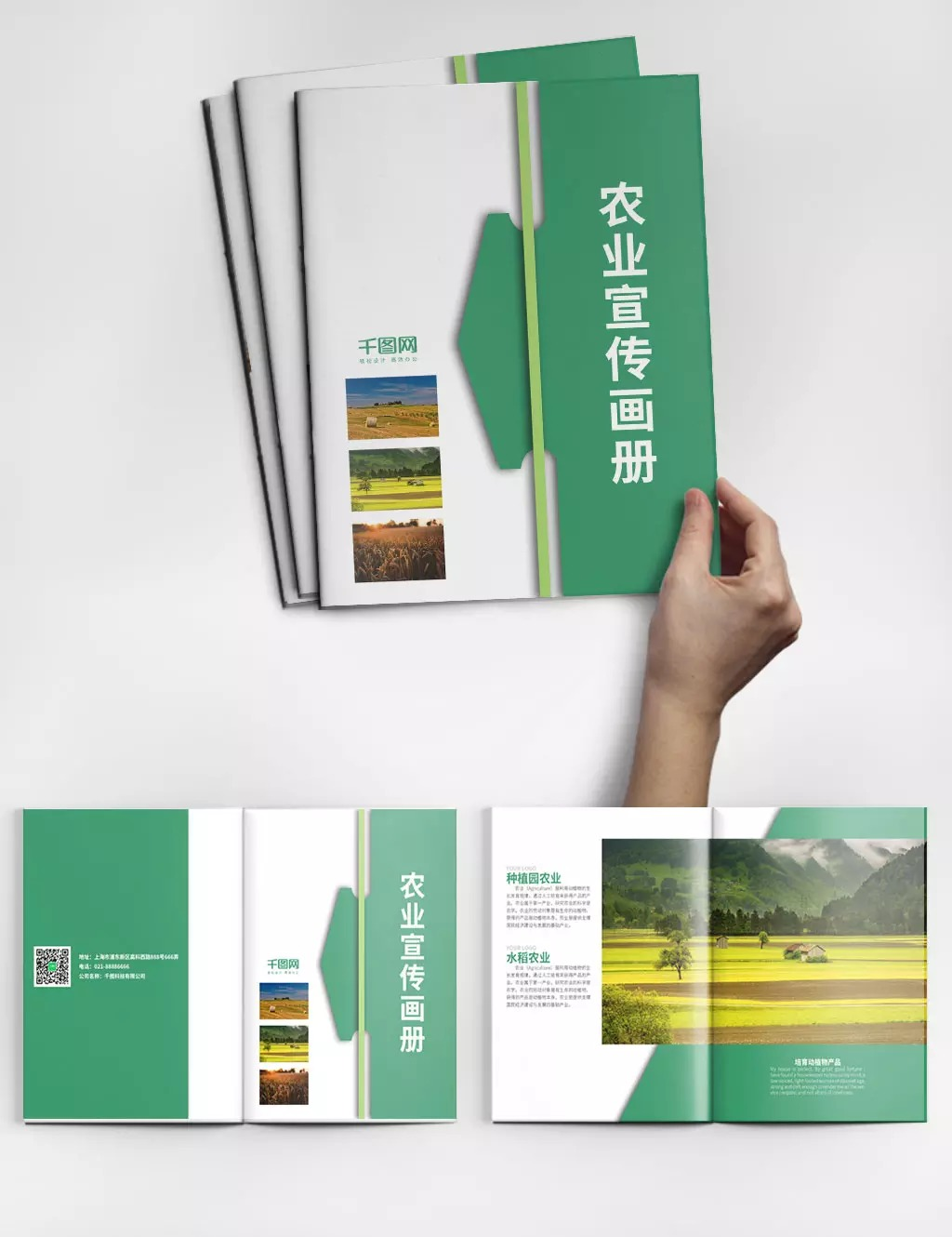 Creative Green Agriculture Album Design Psd Template Album