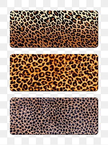 leopard background image material leopard texture leopard background texture Template