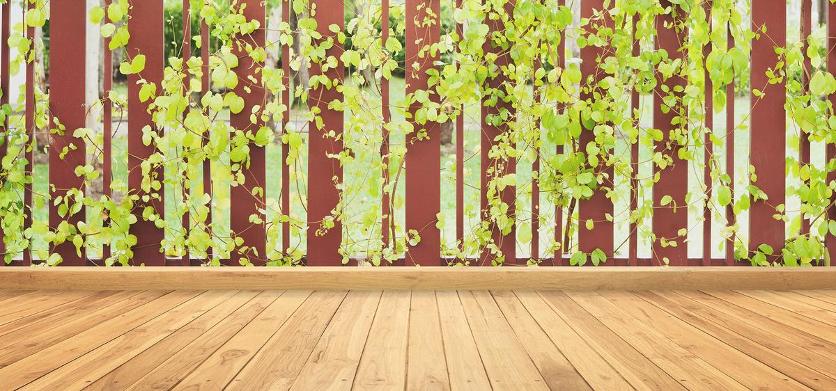 木木質植物公園の葉の背景 ガーデン 秋 葉 背景画像