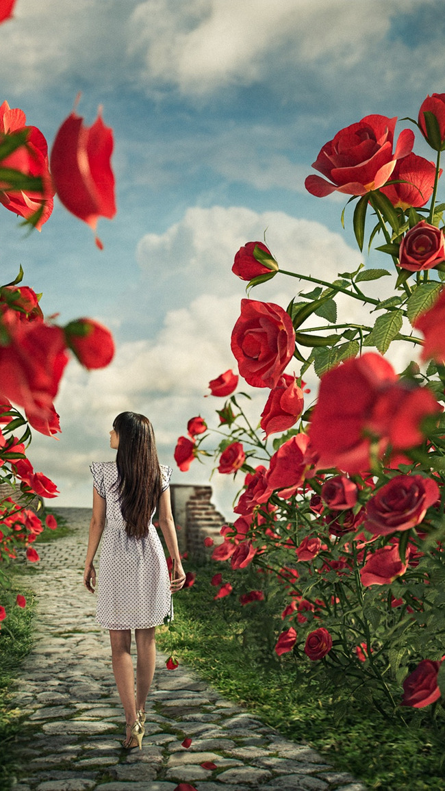 Rose Flowers Background H5 Romantic Beautiful Dream Background
