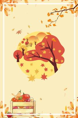 木の植物木質植物の休日の背景 葉 装飾 クローズアップ 背景画像