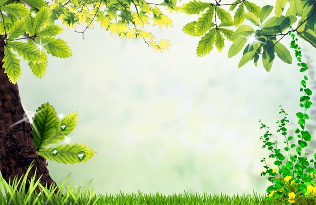 Оптом, фон леса для поздравления