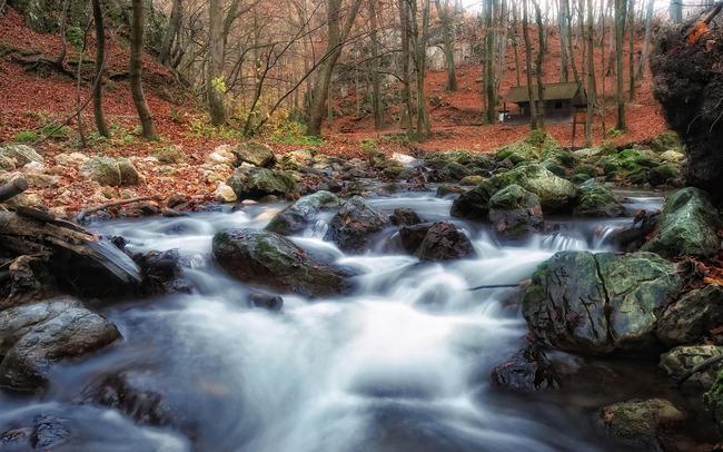 река водопад Forest Stream водоем вода рок Фоновое изображение