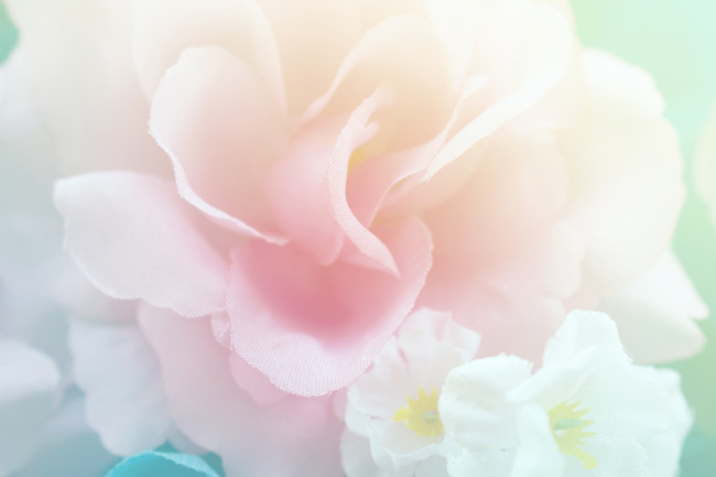 Wall Paper Wide Pink Rose Colours Soft Nature Flower: Watercolor Roses Background Photos, Watercolor Roses