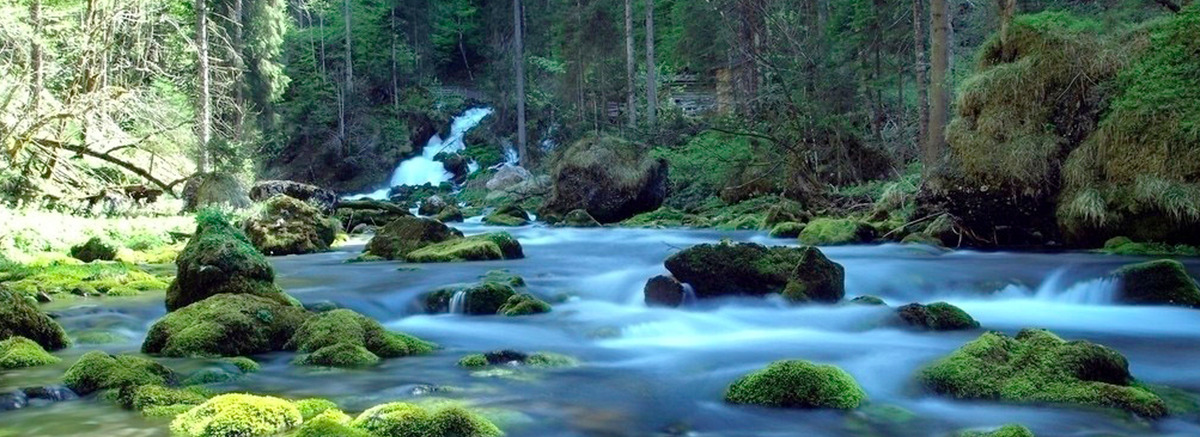 река Forest Stream воды ландшафт гора рок Фоновое изображение