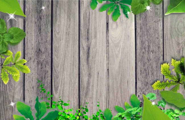 Vascular Plant Plant Herb Wood Background, Tree, Wooden, Fence, Background  Image