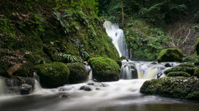 Waterfall River Stream Forest Background, Rock, Stone, Cascade, Background image