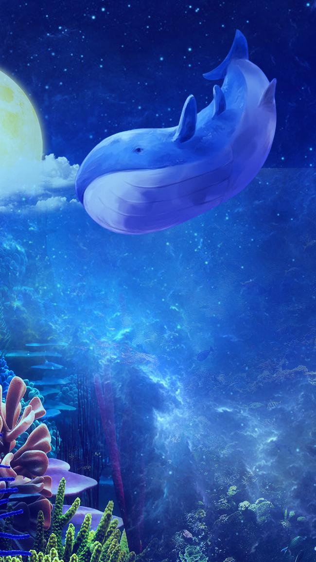Sea Fish Underwater Ocean Background, Aquarium, Marine, Diving, Background image