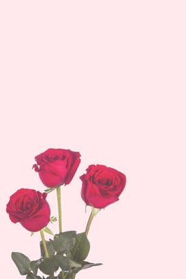 H 5背景、アート、小さな新鮮な、ロマンチックな、花、花、水のボトル、フラワーアレンジメント、美しい、H 5、H 5、単純な 美しいフラワーアレンジメントH 5の背景 5の背景 美しいフラワーアレンジメントH H 背景画像