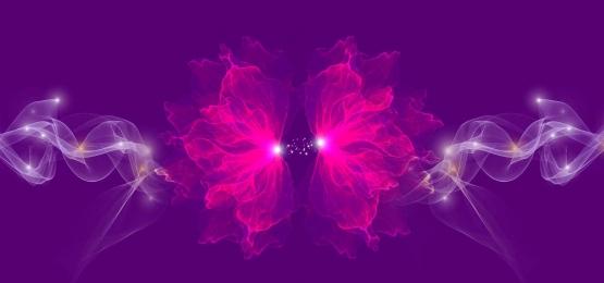 자홍색 그라디언트 로맨틱 꽃, 꽃, 인, 로맨틱 배경 배경 이미지