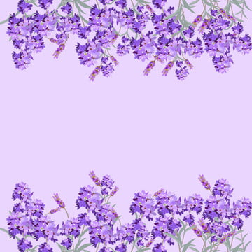 Lavender Background Photos And Wallpaper For Free Download Download 237 lavender background free vectors. lavender background photos and