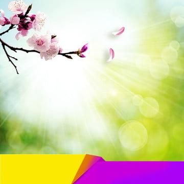 春 桃の花 小さな新鮮な花 花びら , 花びら, 桃の花, 電車の中で化粧品 背景画像
