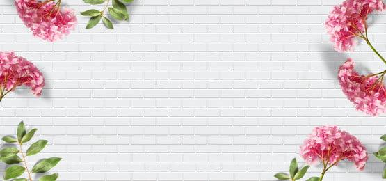 beautiful white wooden floor texture, Wood, Display, Texture Imagem de fundo