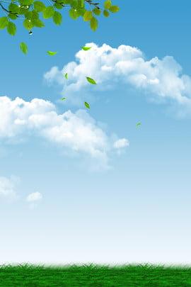 नीले आकाश आकाश सफेद बादल पत्ते , आकाश, नीले आकाश, Daquan पृष्ठभूमि छवि