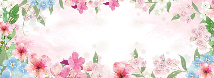 Flower Background Photos And Wallpaper For Free Download,Fractal Design Meshify C Build