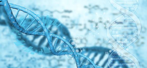 ブルー フレッシュ グラデーション dna, グラデーション, フレッシュ, 医療 背景画像