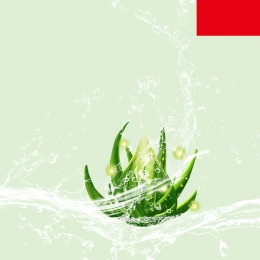 fresh cosmetic materials promotion green leaves , Promotion, Moisturizer, Beauty Imagem de fundo