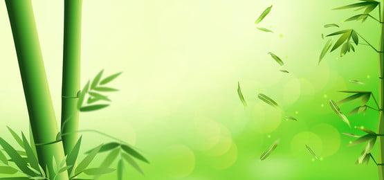 綠色 竹子 竹桿 竹葉, 水珠, 平面, 竹葉 背景圖片