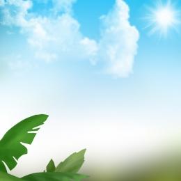 綠色落葉 藍天白雲 簡約 大自然 , 護膚品, 大自然, 美妝 背景圖片