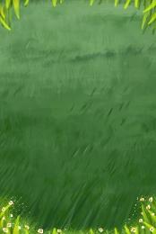 green grass lawn flowers , Green, Leaves, Grass ภาพพื้นหลัง