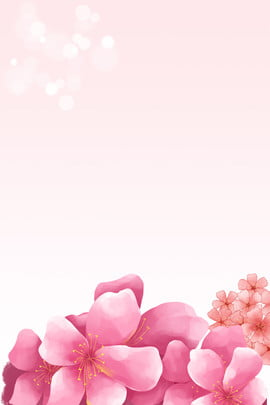 Hồng Lễ hội hoa đào Hoa đào Sansei III Tài Peach Liệu Hình Nền
