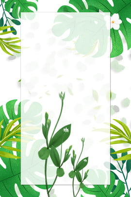 plant leaves green natural , Natural Green, Leaves Poster, Retro Poster ภาพพื้นหลัง