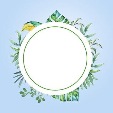 nền đơn giản nền trời xanh lá lá xanh , Bộ Trà, Xếp, Trà ô Long Ảnh nền