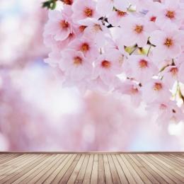 春 花 桃 花びら , 小さな新鮮な, 電車の中, 花 背景画像