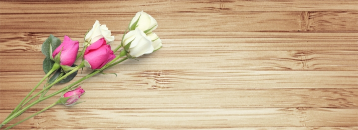 hari valentine i bunga mawar putih papan kayu rose, Hari, Putih, Minimalis imej latar belakang