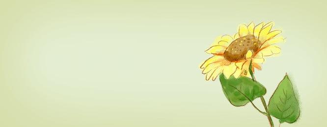 黃色向日葵 黃色背景 簡約背景 女裝, 黃色簡約向日葵女裝banner, 模板, 朝氣 背景圖片