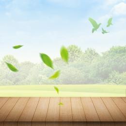 シンプル 小さな新鮮な 自然 鳥 , 自然, スキンケアプロモーション, Care然天成スキンケアプロモーション 背景画像