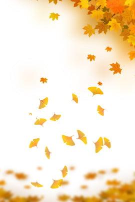 秋 新しい 黄色の葉 新鮮な , 黄色の葉, 新しい, 秋のポスター 背景画像