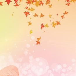 Autumn yellow maple bleak main background Leaf Autumn Yellow Фоновое изображение