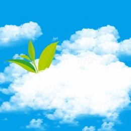 藍天背景 白雲背景 清新背景 綠葉 , 衛生棉, 衛生巾, 化妝品 背景圖片