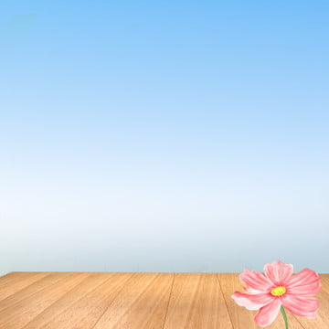 藍天背景 木板 雛菊 藍天背景 , 藍天背景, 雛菊, 蜂王漿 背景圖片