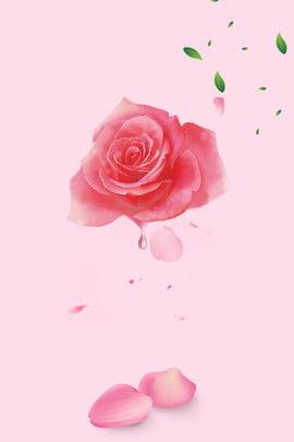 रोज एसेंशियल आयल क्लींजिंग पिक्चर डाउनलोड अमीनो एसिड क्लींजिंग गुलाब , रोज एसेंशियल आयल, पोस्टर, ताजा पृष्ठभूमि छवि