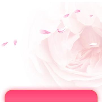 フレッシュサマー スキンケア 化粧品 美容 , 日焼け止め, ピンク, アイシャドウ 背景画像