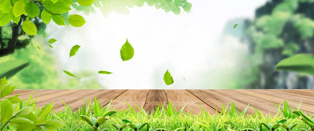 poster background original ecology green leaves nature, Psd, Natural, Product Фоновый рисунок