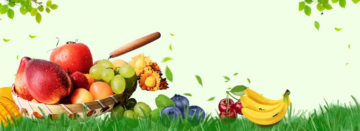 Download Free Vegetables Bamboo Shoots Background Images Shoot Vegetable Nutrition Gourmet Cooking Background Hd Background Png And Vectors