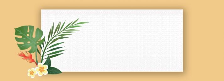 白い花 緑 無地 白枠 白枠 文学的 小さな新鮮な 背景画像