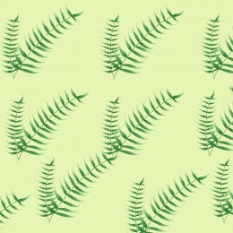 hand drawn fresh green palm leaves main illustration background , Hand Drawn, Fresh, Green Background image