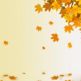 Yellow background hand painted maple background autumn pre sale Autumn Pre Sale Фоновое изображение