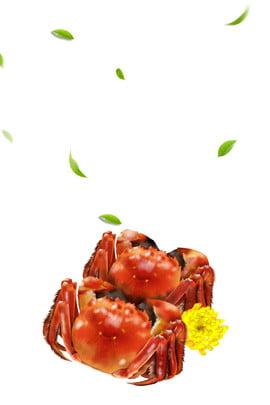 タラバガニ リバーカニ スパイシーなカニのポスター レストラン , 中華風, 中華料理, シーフードの鍋 背景画像