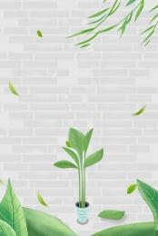 壁 緑の植物 蝶 白 , 蝶, 緑の植物, 幸福 背景画像